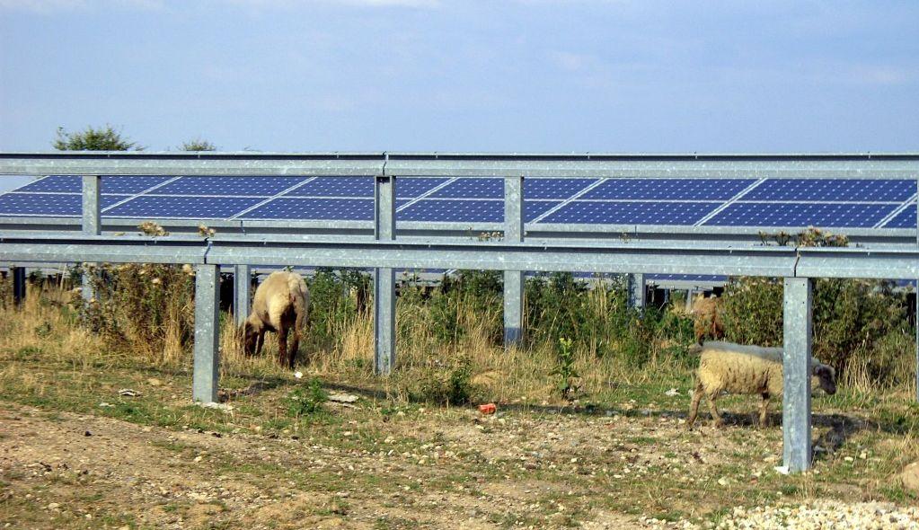 Zeeuwse gemeente stemt in met zonnepark van 8 hectare